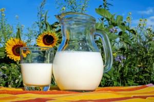 Если молоко разделить на составляющие, то состав молока такой - белок + жир + сахар + кальций. Конечно, это упрощенная формула, но показательная, чтобы разобраться, полезно ли нам молоко. Белок нужен организму, белок строит наши мышцы. Но молочный белок еще называют «казеин». Слышали такое название казеиновый клей? Вот-вот, это отсюда. Клей делают из молочного белка. Этот белок, т.е. «клей», когда мы пьем молоко, попадает и к нам в организм. И наш сильный организм справляется с ним, расщепляя эту клейкую массу.Кстати, по данным Всемирной организации здравоохранения, 80–85% населения мира не переносят молочный белок и лактозу. Вообще молоко хорошо усваивают только младенцы. В состав молока входит и жир. И это не страшно. В конце концов сейчас есть разные виды молока с разной жирностью. Можно выбрать то, что подходит именно тебе. Калорийность молока зависит от доли жира в нем. Но не всегда погоня за полезностью хорошо отражается на вкусе продукта. Молочный сахар еще называют лактоза. Организм умеет переваривать и такое сахар. Но не у всех. Многим лактоза противопоказана. Между прочим, сейчас научились делать молоко без лактозы. Кальций. Его в молоке много. Очень много. Это вроде кстати, организму же нужен кальций. Но молочный кальций плохо усваивается человеческим взрослым организмом. А реально хорошего кальция, кстати, много в сырых овощах и фруктах. В общем, если хотите пить вкусные капучино, какао, и молочные коктейли, пейте, но не увлекайтесь.