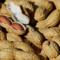 Арахис - орех или нет?